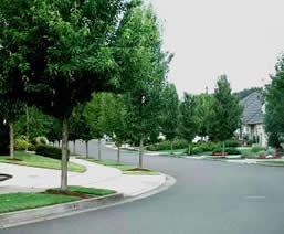 neighborhood_000_001