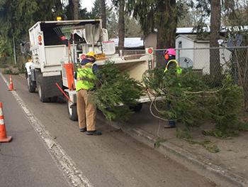 Operations staff removing tree debris