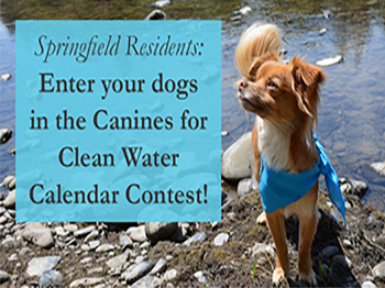 Image of a dog promoting the Canine Calendar Contest