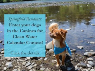 Click to enter Canines for Clean Water Calendar Contest