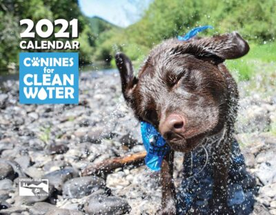 Canines 2021 Calendar Front